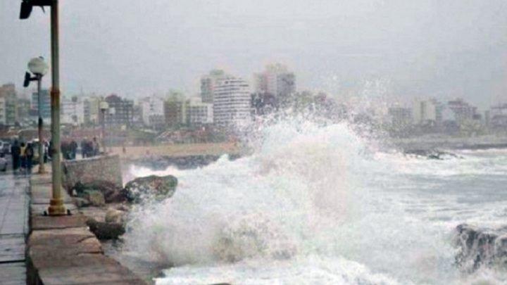 """Fenómeno tenga lugar en la """"La Feliz""""Alerta de tsunami en la costa argentina: las chances de que ocurra en Mar del Plata"""