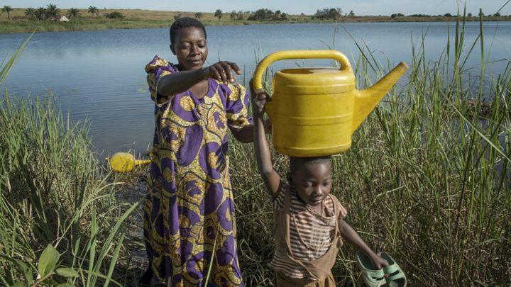 El impacto de la desigualdadPropician vincular las políticas ambientales con las de género