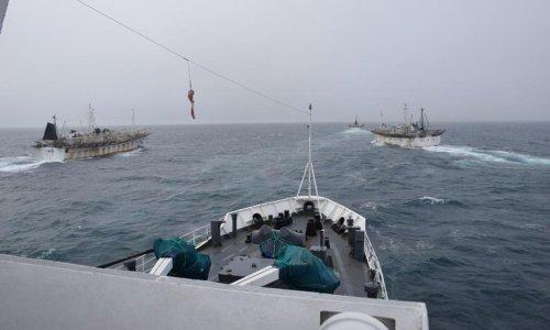 Alerta por barcos pesqueros chinosAl menos 27 barcos pesqueros chinos llegaron al Atlántico y amenazan los recursos naturales del Mar Argentino