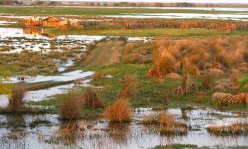 Ministerio de Ambiente y Desarrollo SostenibleAmbiente creó el Programa de Humedales