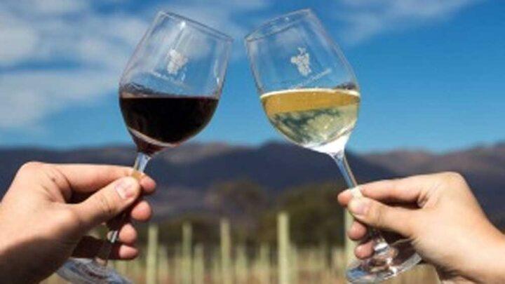 TucumánProponen un Camino del Vino con 14 bodegas a lo largo de 100 kilómetros