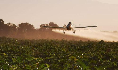 Final para un veneno: oficializan la prohibición para uno de los agrotóxicos más letales creados por Dow CortevaDesde 2023, estará prohibido el uso del insecticida Clorpirifós