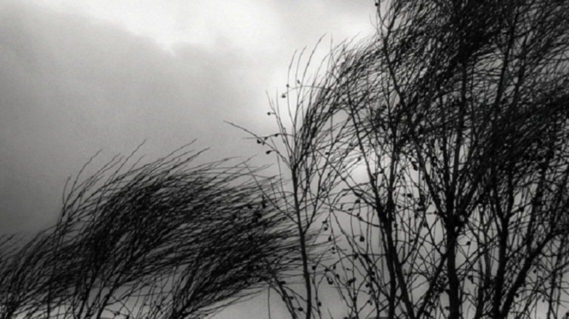 Alerta meteorológicaEmiten alerta por lluvias y vientos para el martes y el miércoles en la Región