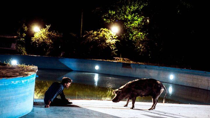 CineDos funciones presenciales de «La chancha» en el Centro Cultural 25 de Mayo