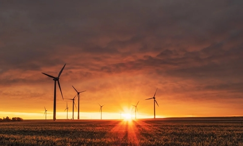 La energía eólica anuncia que generará un ahorro de 800 millones de dólares anualesCámara Eólica Argentina destaca la importancia del sector