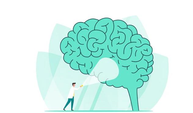 SaludEncuentran un componente desconocido del cerebro que se asocia con la mayor gratificación