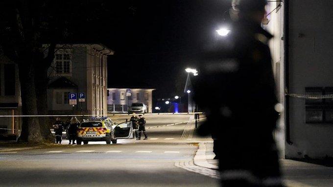 NoruegaUn hombre mató a cinco personas en un ataque con arco y flecha